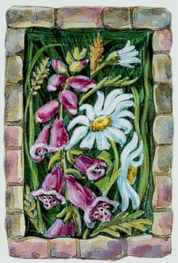 Foxgloves and Dog daisies